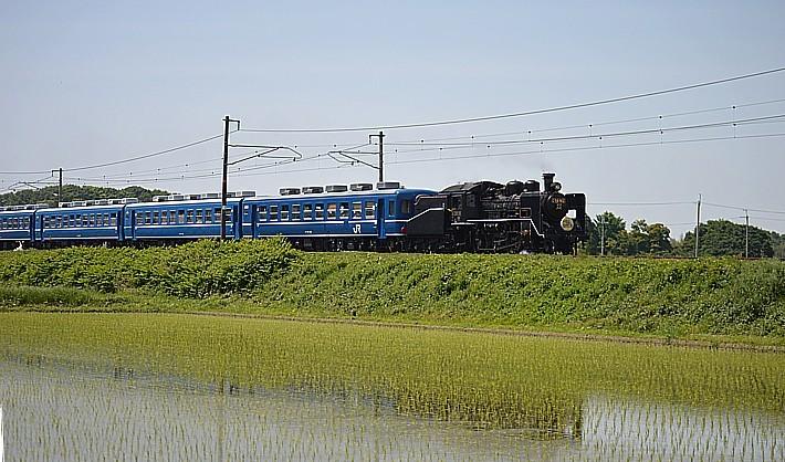 DSC_9757s.jpg