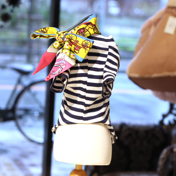 Boder-with-scarf-limited3.jpg