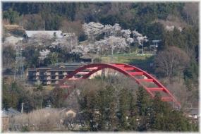 180331E 043巴川橋と桜32