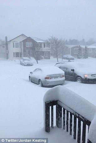 4C97F35400000578-0-image-a-43_1527186722322雪国in カナダの初夏