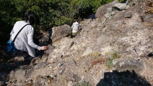 碁石山13