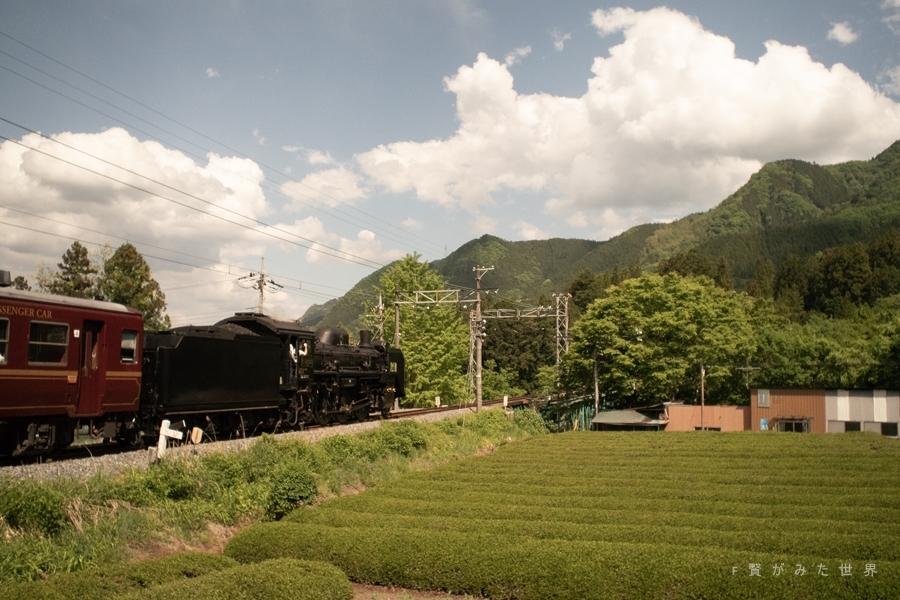 s-P5041164.jpg