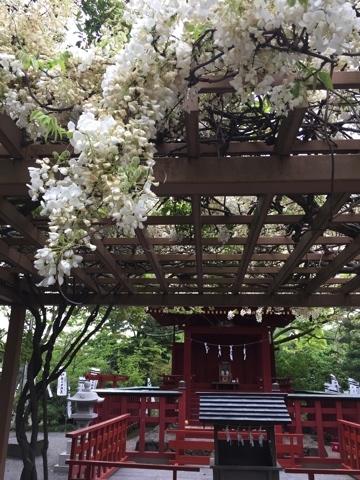 2018-04-17 鎌倉鶴岡八幡宮弁天様