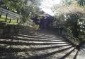 八坂神社 (2)
