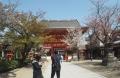 八坂神社 (4)