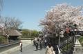 八坂神社 (7)