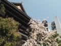 鴨川と本能寺 (5)