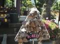 高木神社 (3)
