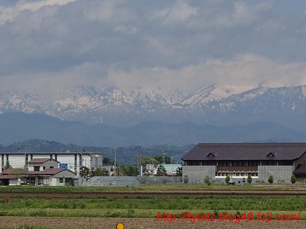 P5041245-S.jpg