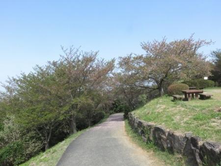 野鳥清水山 2018-04-03 021