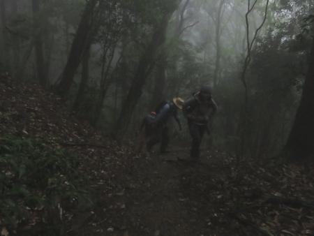 カラ迫岳山開き 2018-04-15 098