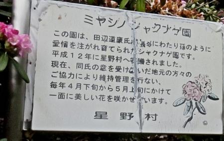 カラ迫岳山開き 2018-04-15 206