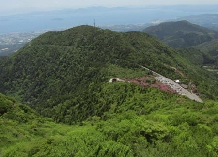 雲仙ヒカゲツツジ 1980-01-01 023