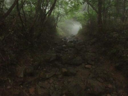 霧の天山 1980-01-01 088