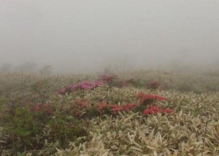 霧の天山 1980-01-01 128
