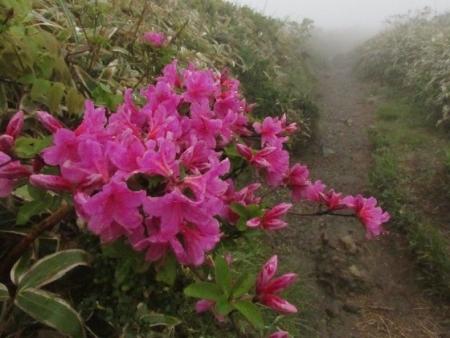 霧の天山 1980-01-01 175