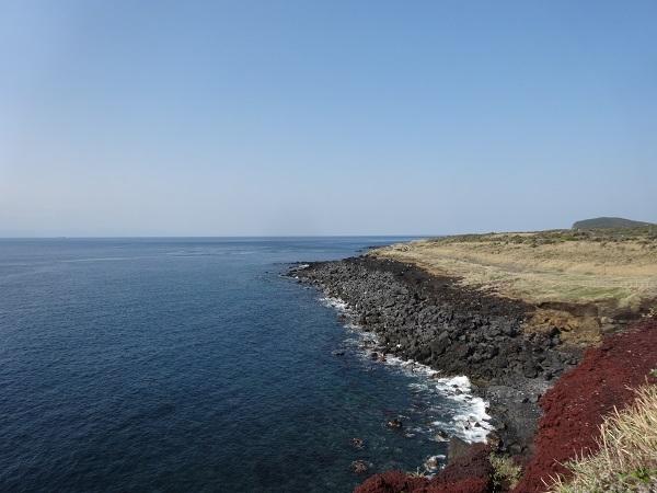180331大島その3 (13)