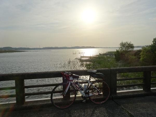 20180422印旛沼付近 (8)