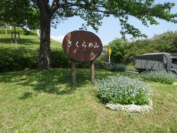 20180428ワット泊パクナムと成田 (10)