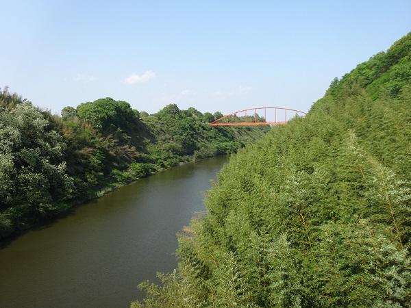 20180428ワット泊パクナムと成田 (14)