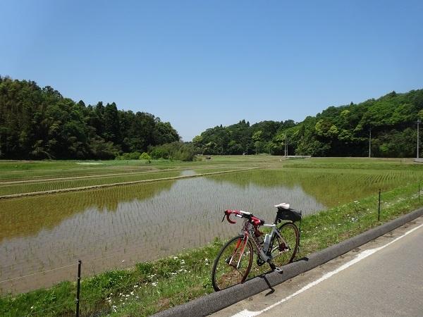 180505秋元牧場 (4)