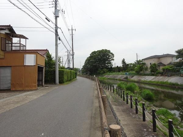 20180512印旛沼 (3)