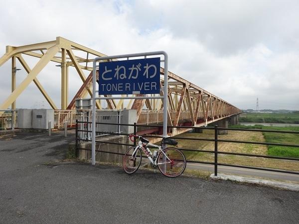 180519渡良瀬遊水地 (3)