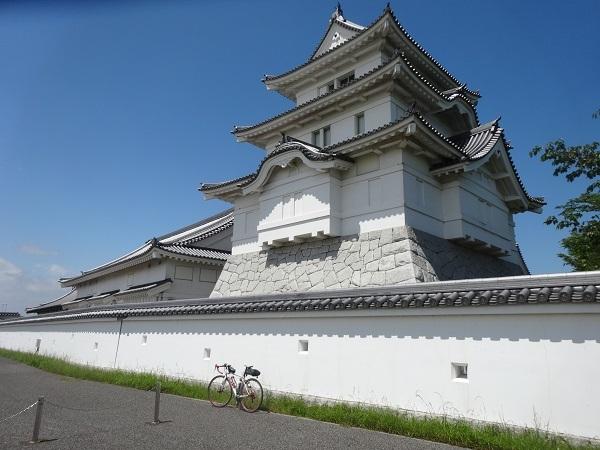 180519渡良瀬遊水地 (5)
