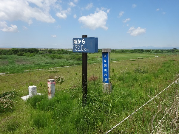 180519渡良瀬遊水地 (8)