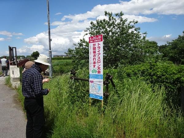 180519渡良瀬遊水地 (24)