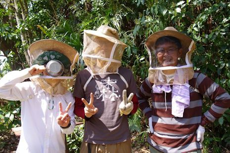 ニホンミツバチ研修2