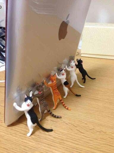 猫が支える