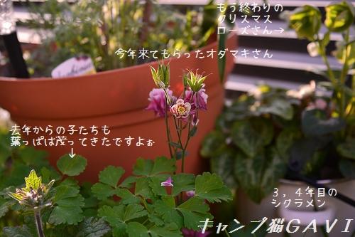 180413_5550.jpg