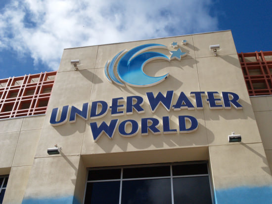 under_water_world_03.jpg