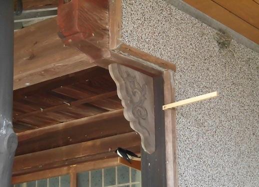 ツバメ2羽下表止まり木&玄関巣 pe