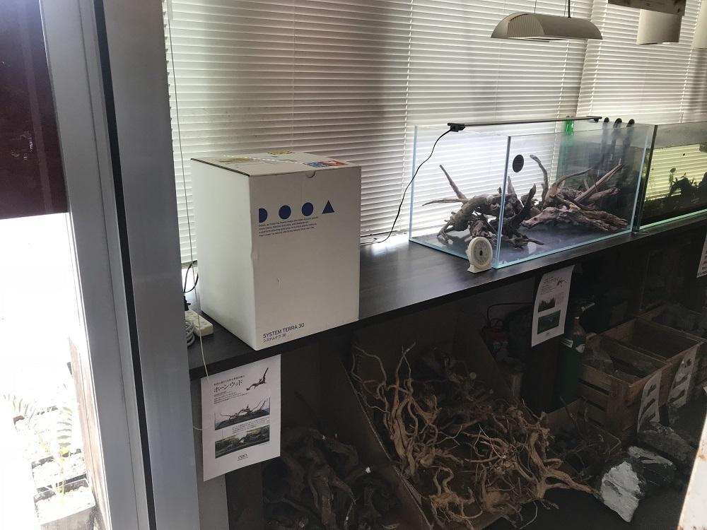 DOOAシステムテラ30展示水槽