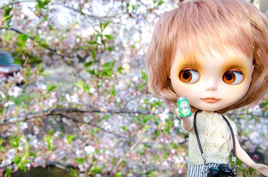 20180401ナナシお花見-3