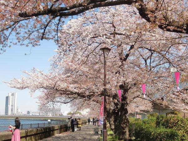 asakusa_1803_04.jpg