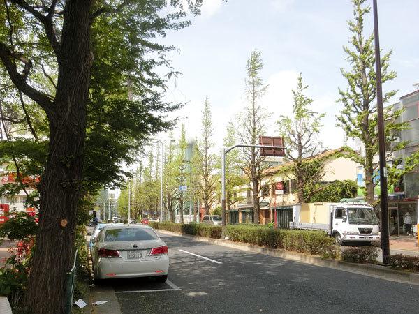 shirokane_1804_102.jpg
