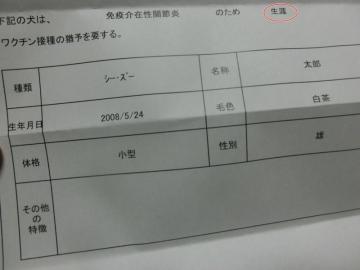 CIMG2061_9-800x600.jpg