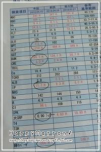 血液検査結果4月10日1