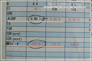 血液検査結果4月10日4