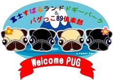 WelcomePUGTOP.jpg