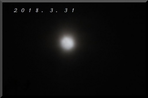 11115.jpg