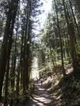 吹割の滝の対岸の遊歩道