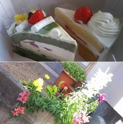 平成30年5月22日ケーキ