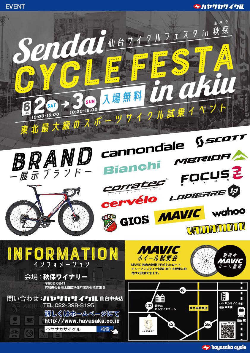cyclefesta2.jpg