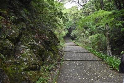 こんな坂です ・・・