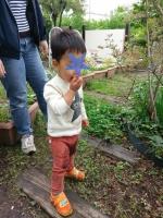 庭遊び2 5・8