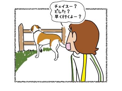 02042018_dog1.jpg